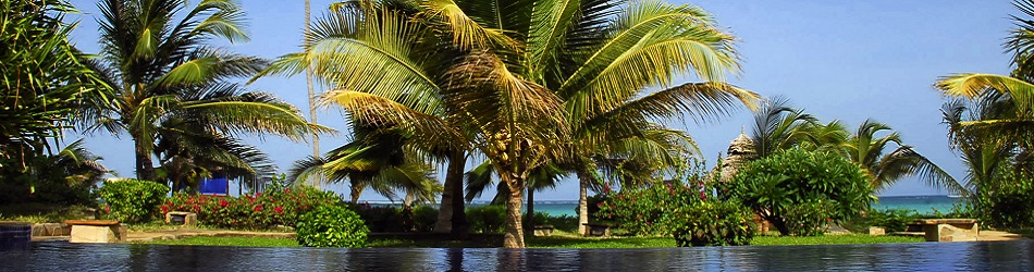 Tanzania - THE PALMS